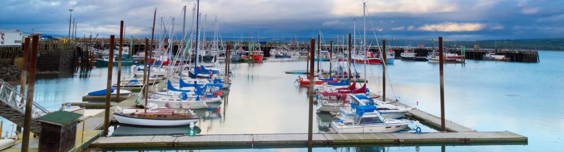 Boats in Digby Harbour