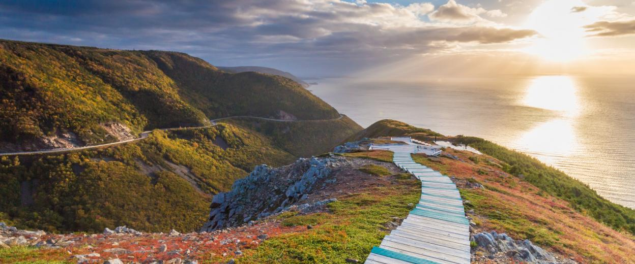 Skyline Trail boardwalk leading to platform overlooking Cabot Trail