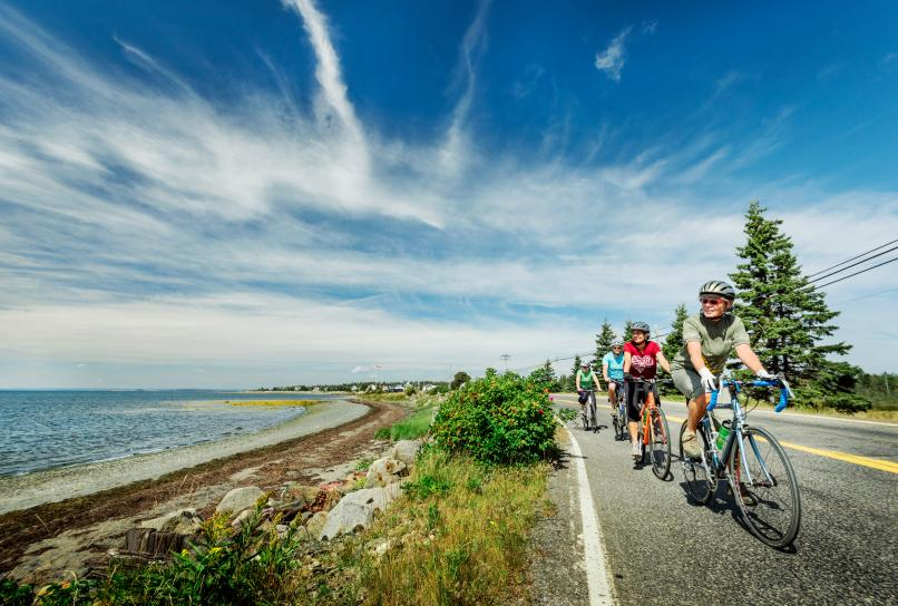 Cyclists cycling along the South Shore near Chester.