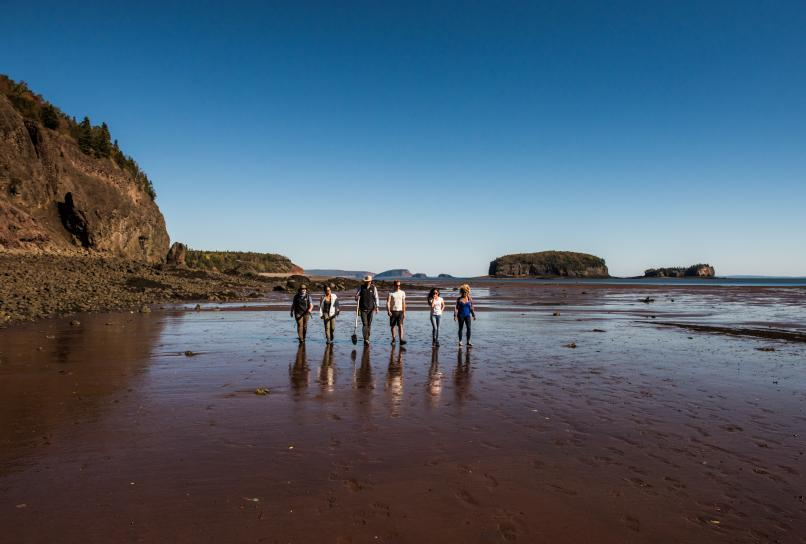 Dino Dig experience on the Bay of Fundy